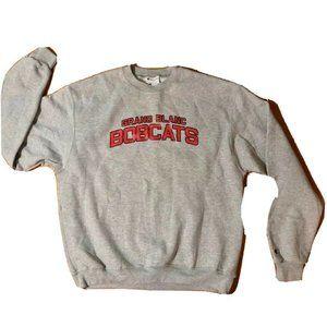 Vintage Champion Eco Gray Pullover sweatshirt